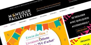 Site Web Monsieur Paillettes